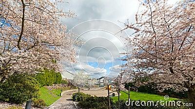 Czasu upływ chmury i niebo nad boisko do koszykówki i boiskiem w Szczęśliwej dolinie LUB 4k uhd zbiory