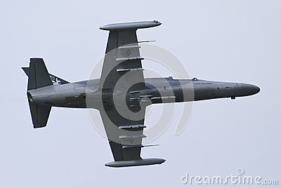 Czech air force L-159 Editorial Image