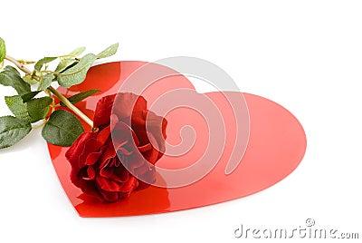 Czerwona róża miłości