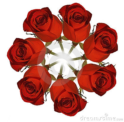 Czerwone róże wieniec.