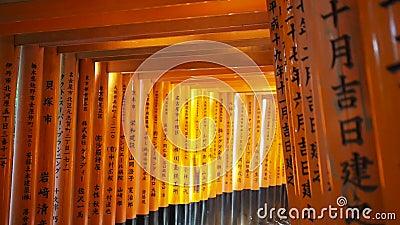 Czerwony bramy torii przy Fushimi Inari świątyni świątynią zbiory