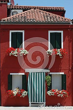 Czerwony domowa