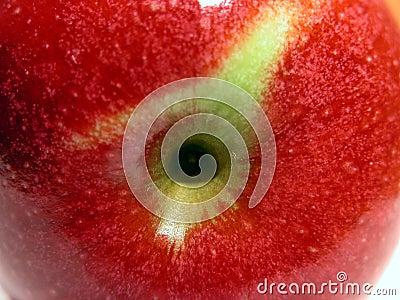 Czerwony jabłczana