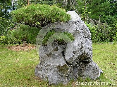 Développé par la roche