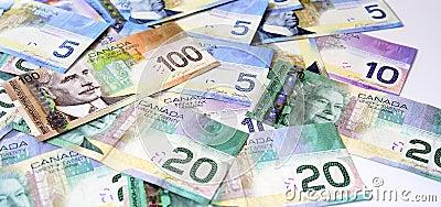 Dólares canadienses del dinero