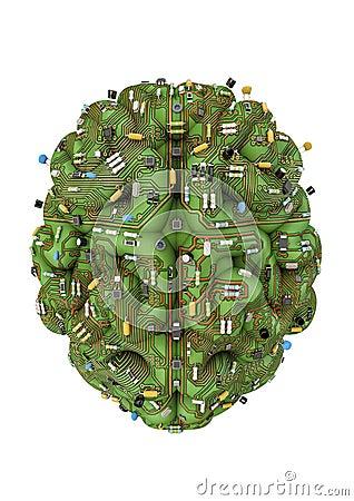 Circuit brain