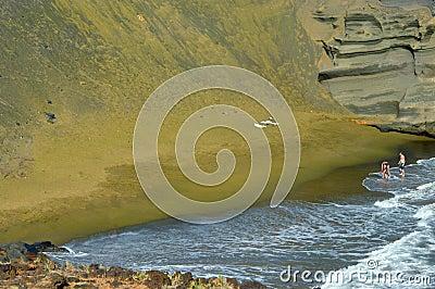 Da solo sulla spiaggia verde della sabbia