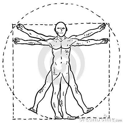 Da Vinci human body sketch