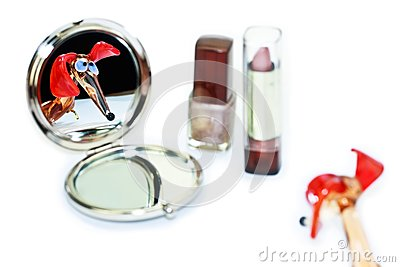 Mirror on Dachshund Looking In The Make Up Mirror Royalty Free Stock Photo