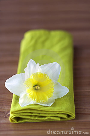 Daffodil Flowers on Daffodil Flower On Green Napkin Royalty Free Stock Photography   Image