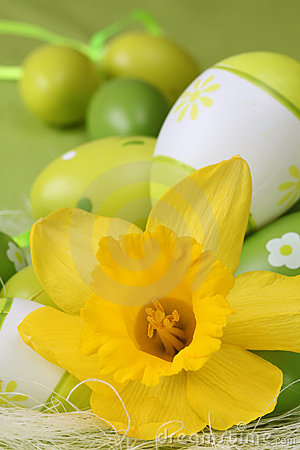 Daffodil and green Easter eggs