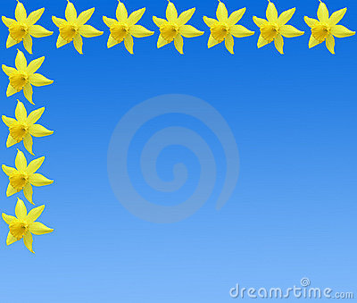 Daffodile frame pattern