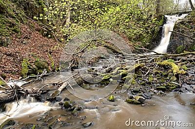 Dageberga waterfalls
