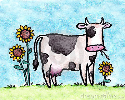 The dairy cow