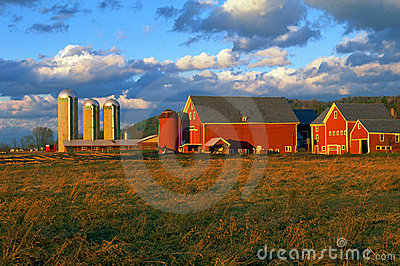 Red Dairy Farm Barns and Silos