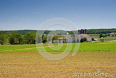 Dairy Farm in Rural Pennsylvania