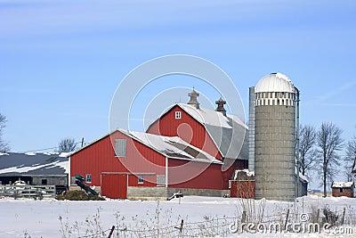 Dairy Farm Winter