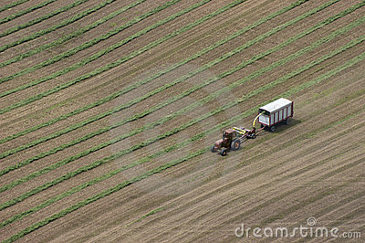 Dairy Farmer Cutting Hay Tractor Field Aerial View