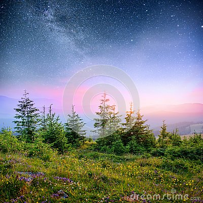 Free Dairy Star Trek In The Woods. Dramatic And Picturesque Scene. Fantastic Starry Sky And The Milky Way Stock Photo - 100572890