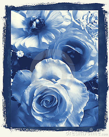 Daisies in delft s Blue
