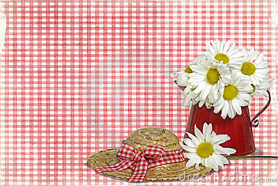 Daisies on Gingham