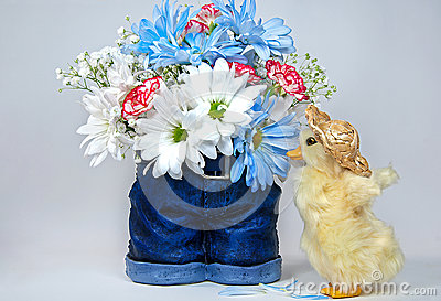 Daisy bouquet with duckling