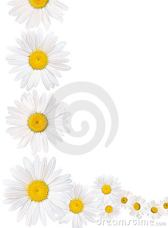 Free Daisy Chain Border Stock Images - 21284034