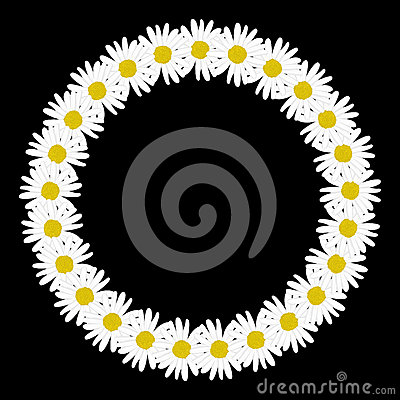 Free Daisy Chain In The Shape Of A Circle Frame Stock Photography - 49518552
