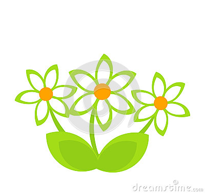 Daisy clump