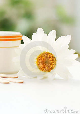 Daisy, cream jar, cosmetics