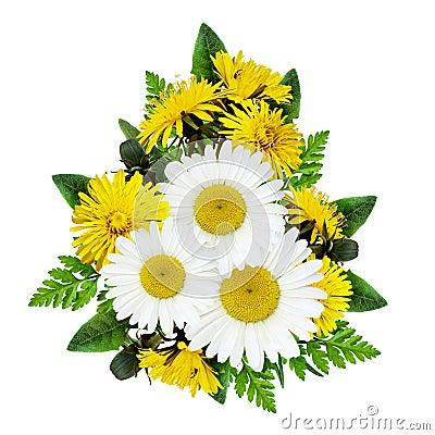 Free Daisy Flowers Bouquet Stock Photos - 66710693