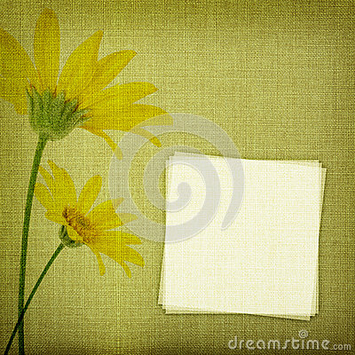 Daisy flowers on fabric background