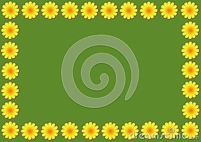 Daisy flowers illustration