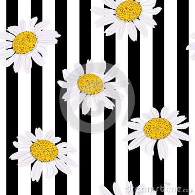 Free Daisy Flowers. Seamless Pattern. Vector Illustration. Black And White Stripes Royalty Free Stock Photography - 108970667