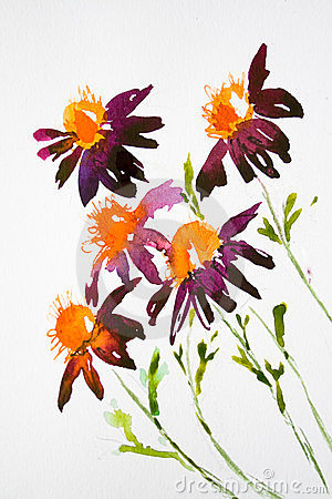 Daisy flowers on watercolor