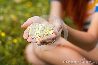Daisy in his hand