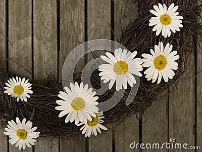 Daisy s on a branch wreath