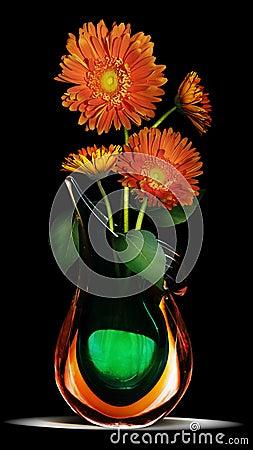 Daisy in vase