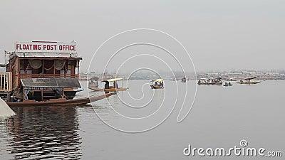 Dal Lake almacen de video