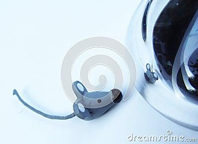 Dal mouse al mouse