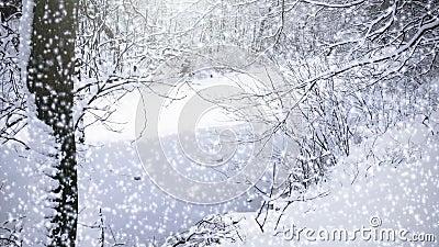 Dalende sneeuw stock videobeelden
