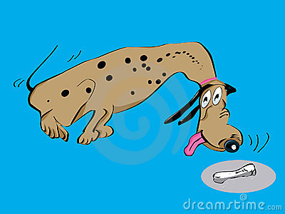 Dalmatian dog cartoon