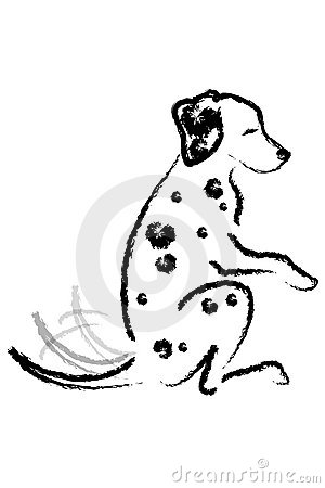 Dalmatian dog gives paw.