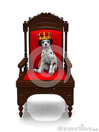Dalmatian puppy prince