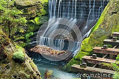 Dam in a Nature