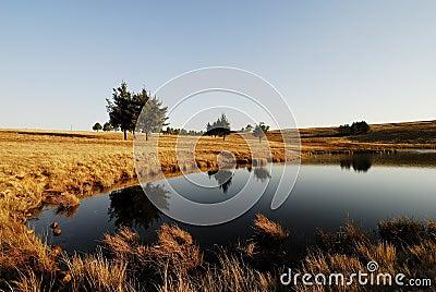Dam Reflections