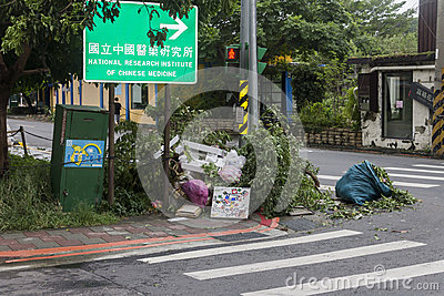 Damage done by the Typhoon Soulik to the Taipei city Editorial Stock Image