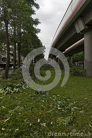 Damage done by the Typhoon Soulik to the Taipei city Editorial Photo