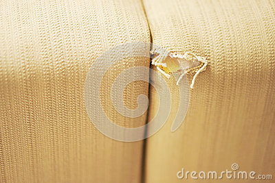 Damaged couch