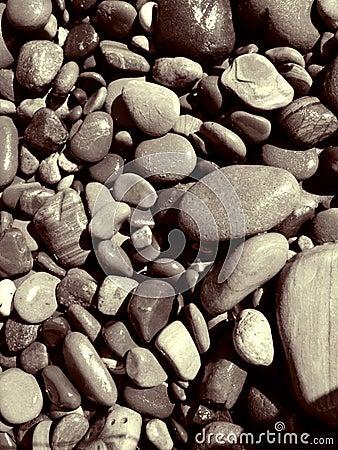 Damp And Sandy Beach Stones